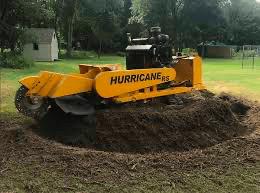 Stump removal in Dewitt Mi